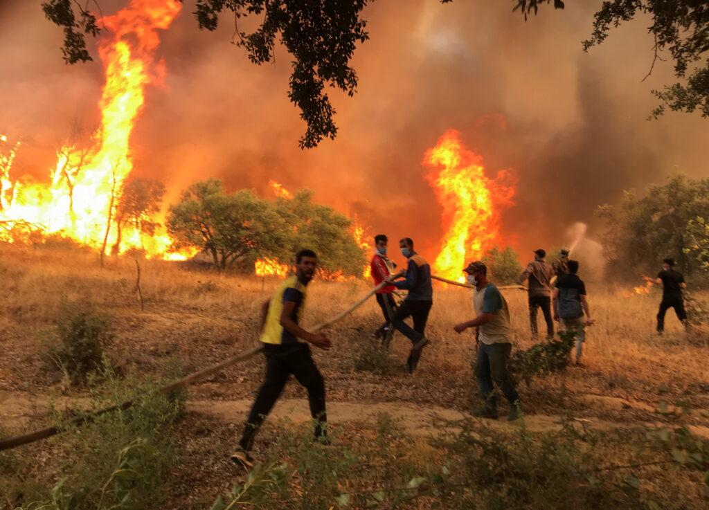 Incendi in Algeria